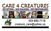 Care 4 Creatures- CAT SITTING - NW Calgary