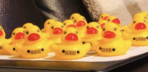 Duck Duck Jeep- standard