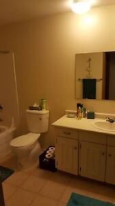 1 bedroom apartment to sublet, available for October 1, 2016