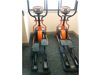 Adult cross trainer