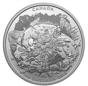 Pure Silver Rugged Mountains coin