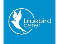 Care Assistant (Evenings & Weekends)