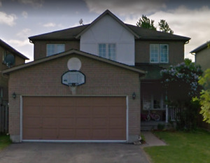 house for rent-Holly Community Area