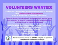 Recruiting Volunteers for Second Chance Animal Rescue