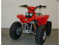 Quadzilla R100 Junior Kids Quad ATV 100cc