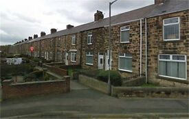 Fantastic 2 bedroomed property to rent in Henley Gardens, Consett, DH8 7JP