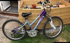 Extreme Roma Raleigh Bike