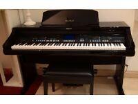 Electric Piano - Glossy Black, Technics PR903 - Brilliant sound, excellent condition.