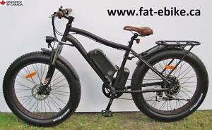 New Fat Ebike - loaded with fine upgrades & accessories - Delivered promptly to your door