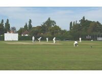 WOMENS/GIRLS CRICKET: Purley WCC Looking for New Players
