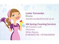 Mk Spring Cleaning Services Domestic cleaner we'll make your life spotless