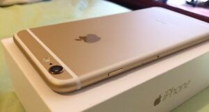 iPhone 6 Plus 16gb White/Gold Unlocked Scarborough Stirling Area Preview