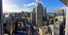 CBD Penthouse   1 Room to Rent   Amazing 360 Views   Gym, Pool Sydney City Inner Sydney Preview