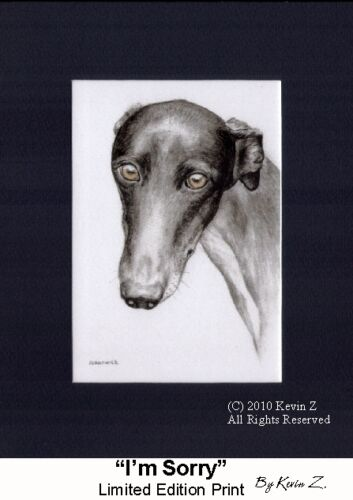 Black Greyhound Print Sad Eyes I'm Sorry Signed Art Artist Kevin Z Arttogo
