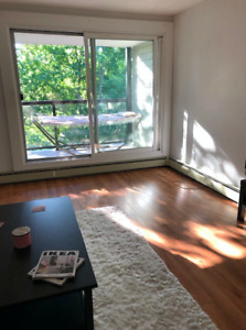 May 1st - Large 1 Bedroom West End Apartment