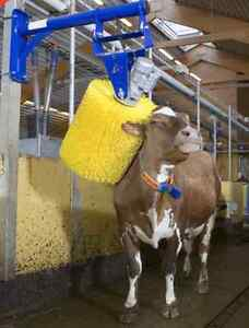 Milking Machines - Dairy Farm Equipment - Factory Direct! Cambridge Kitchener Area image 1