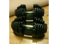 Bowflex 1090 dumbells 41kg each