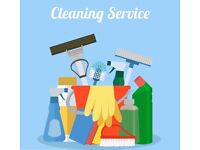 Deep Professional Cleaning