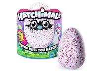 Hatchimal pink - £100
