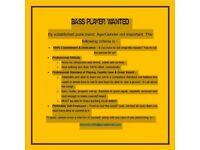 BASS PLAYER WANTED, BY ESTABLISHED PUNK BAND