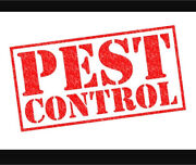 PEST CONTROL - Cockroaches, Spiders, Mice - SYDNEY $79 Hoxton Park Liverpool Area Preview