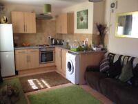 Modern 1 Bed Flat in Cathays, Available 01/07 for £600pcm