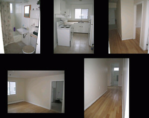 2 Bedroom apartment Main Ave For Rent