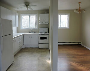 Pet-friendly 2-bedroom in Dartmouth on a bus route avail. now