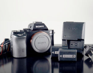 Sony Alpha A7S full frame mirror less camera