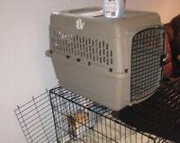 Medium size dog kennel
