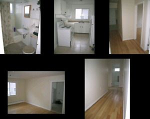2 bedroom apt for rent on Main ave halifax