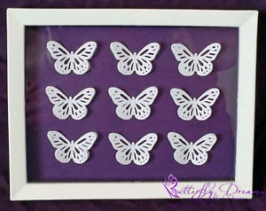 Purple and White Butterfly Shadow Box