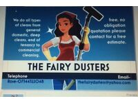 thefairydusters cleaning services