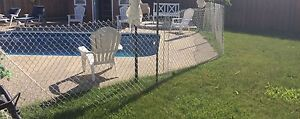White Plastic Coated Chain Link Fence-MUST GO ASAP