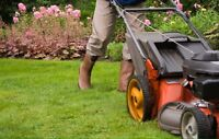 Experienced Landscapers with drivers license