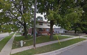 INCLUSIVE renovated basement apartment for rent @ 704...