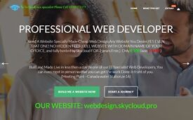 GET ANY WEBSITE IN THE WORLD YOU WANT, NOW ONLY £110 CAN BE MADE IN LESS THEN 24 Hours by SkyCloud