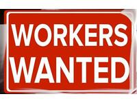 Staff wanted for warehouse job for online rug retailer
