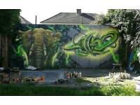 Graffiti artist /airbrush artist for a bespoke mural,shop shutters ,kids bedroom and more