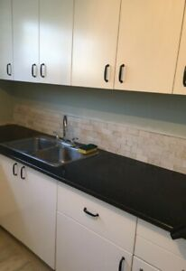 Executive and Fully renovated Basement SuitUnit