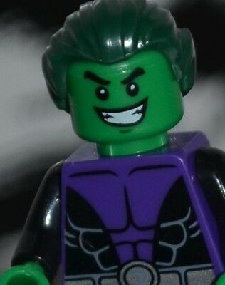 Teen Super Heros (DC Super heroes BEAST BOY figure US Seller Teen Titans)