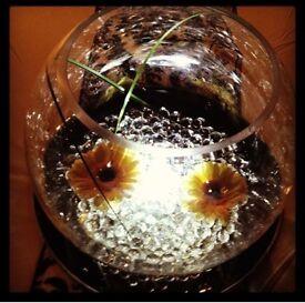 "10 x 10"" glass centre piece fish bowls"