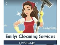 House cleaning domestic