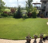 Saskatoon lawn care! Licensed & Insured and WCB