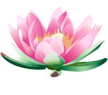 Mobile Chinese massage ( tuina) and reiki for families.