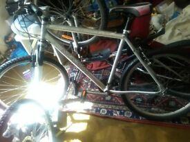 Bike Mountain Bicycle