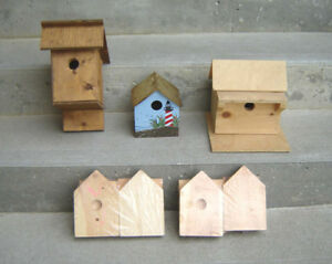 New Birdhouses, 2 Kids Birdhouse Kits, New Frog Ornament