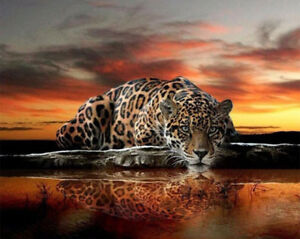 NEW 5D Diamond Square painting-Leopard counted cross stitch