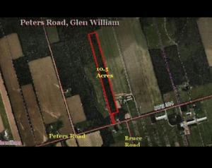 10.5 acres in Kings County