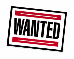 WANTED - Partial - Lender take back/ Rent to own